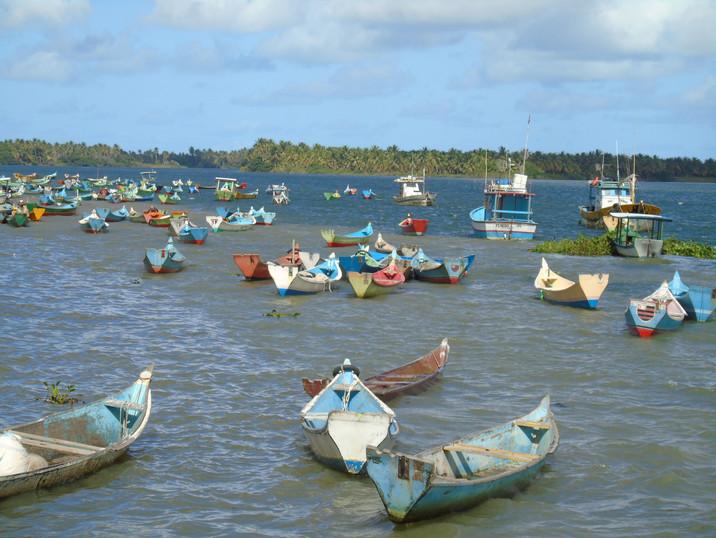 Litoral Sergipano, cenário da Restinga
