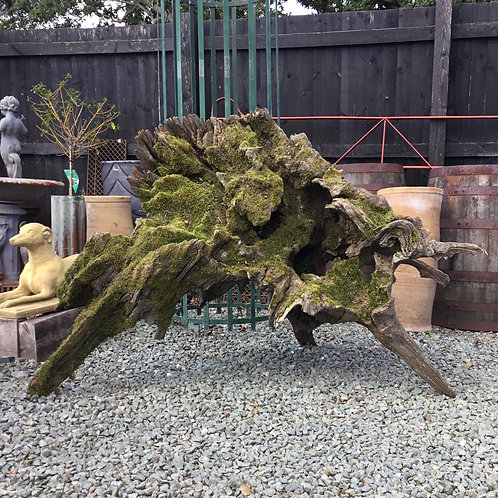 Ancient Oak Tree Root Stump Garden Sculpture