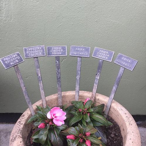 Edwardian Plant Labels
