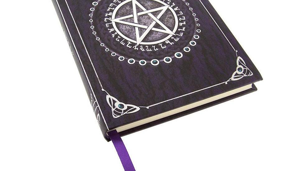Spell Book Purple 17cm