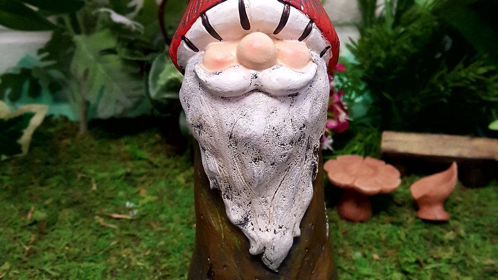 Gnome Mushroom Kev