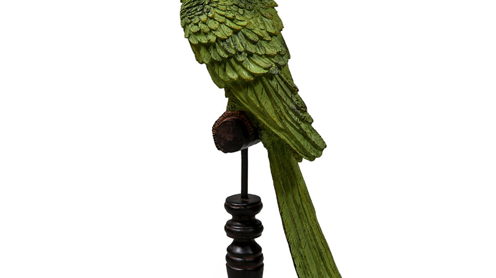 Green Parrot on a Perch