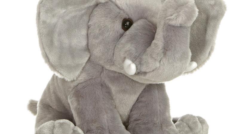 Elephant Destination Nation