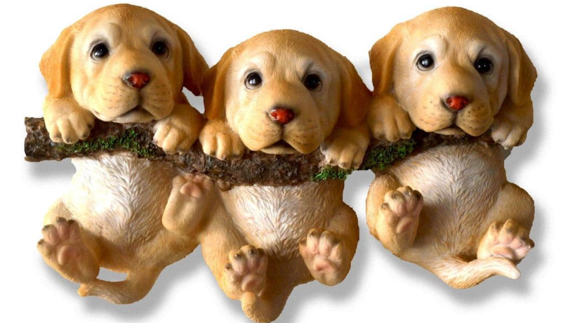 Golden Puppies on a Branch