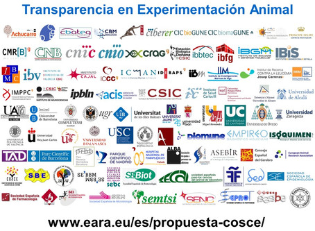 Transparency Agreement on Animal Research launched in Spain