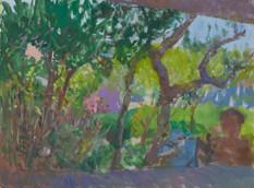 Zakynthos, through the Trees, with Nico
