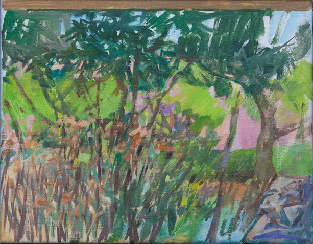 The Garden, Zakynthos - Sold