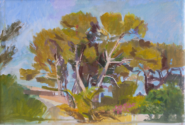 Pine Trees, La Ciotat, Late Afternoon