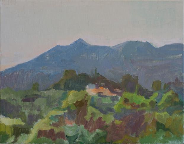 Mount Tamalpais in the Morning