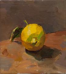 Brightly Lit Lemon no. 1