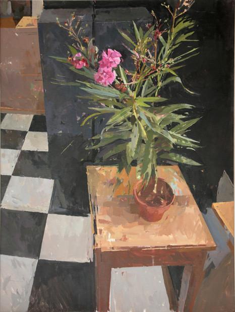 The Oleander - Sold