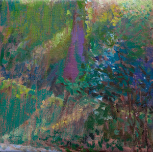 Sunlight on the Hillside, Luberon no.1