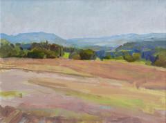 A Pasture near Civita Castellana