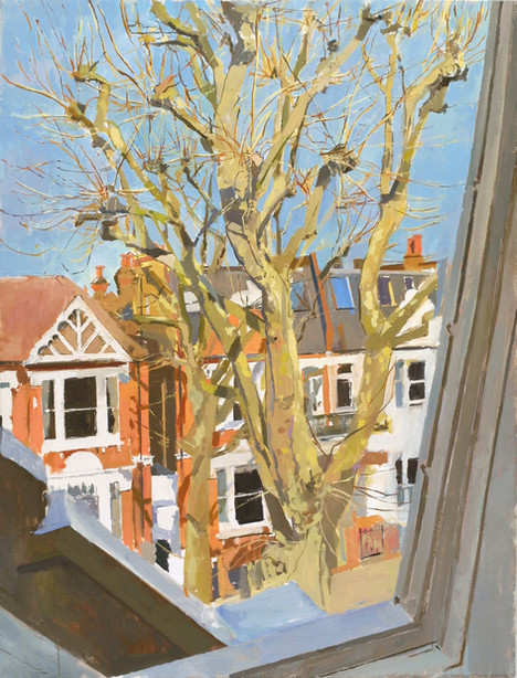 London Plane, Sunlight - Sold