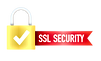 secure-connection-icon_100456-1031.png