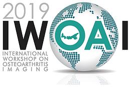 IWOAI_2019_logo_300dpi_flat.png