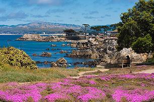 Pacific Grove.CA.USA.jpg