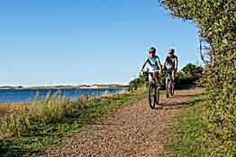 Bike tour.png