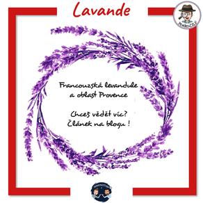 Levandule a Provence