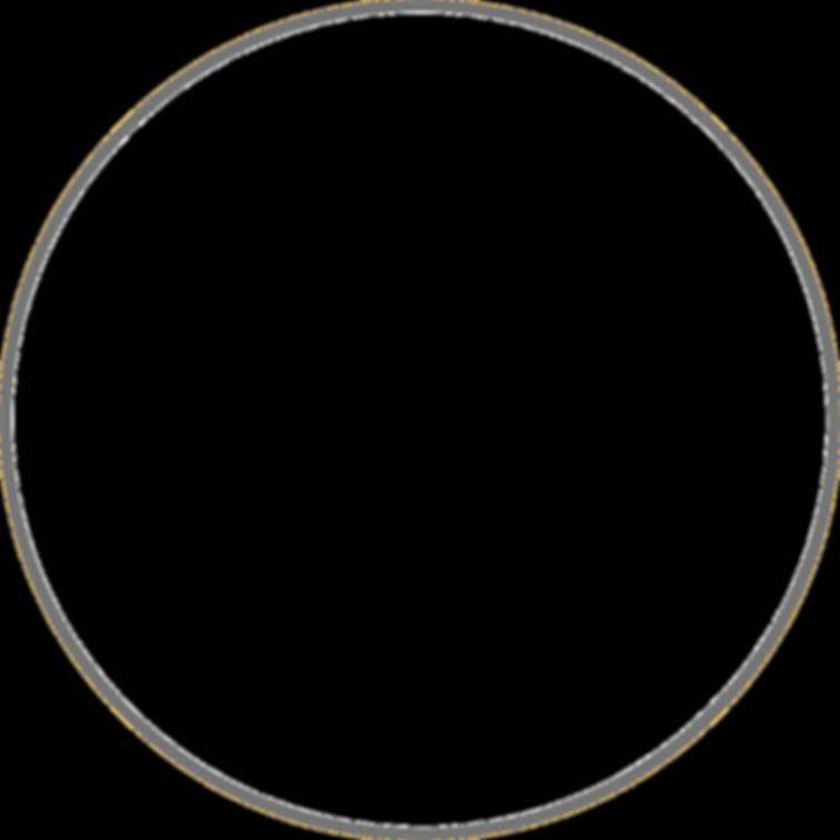 circulo (3) (1).png