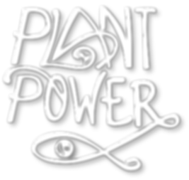 The Plant Power Experience