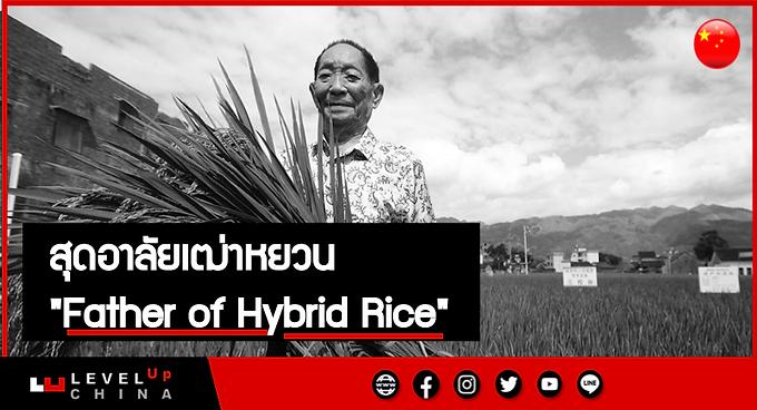 """สุดอาลัย ผู้เฒ่าหยวน """"Father of Hybrid Rice"""" จากไปในวัย 91 ปี"""