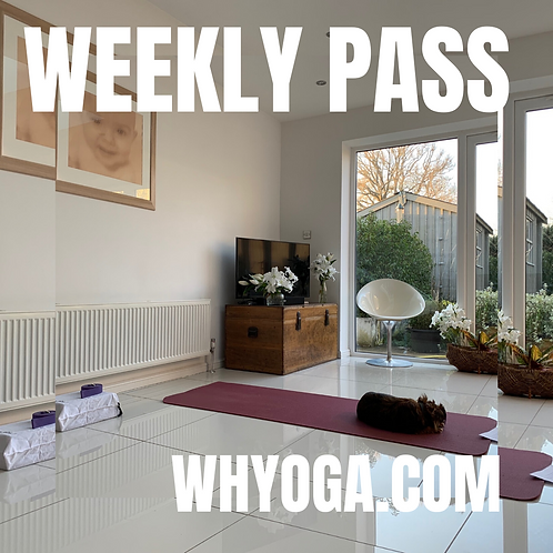 Live Streaming Weekly Class Pass -