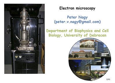Electron_microscopy_PeterNagy.jpg