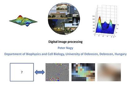 Digital_image_processing_PeterNagy.jpg