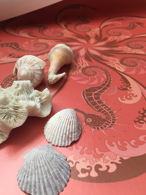 Seahorse nautical pearlized Mica unpasted wallcovering, coral wallpaper for walls, Judit Gueth Design, Toronto