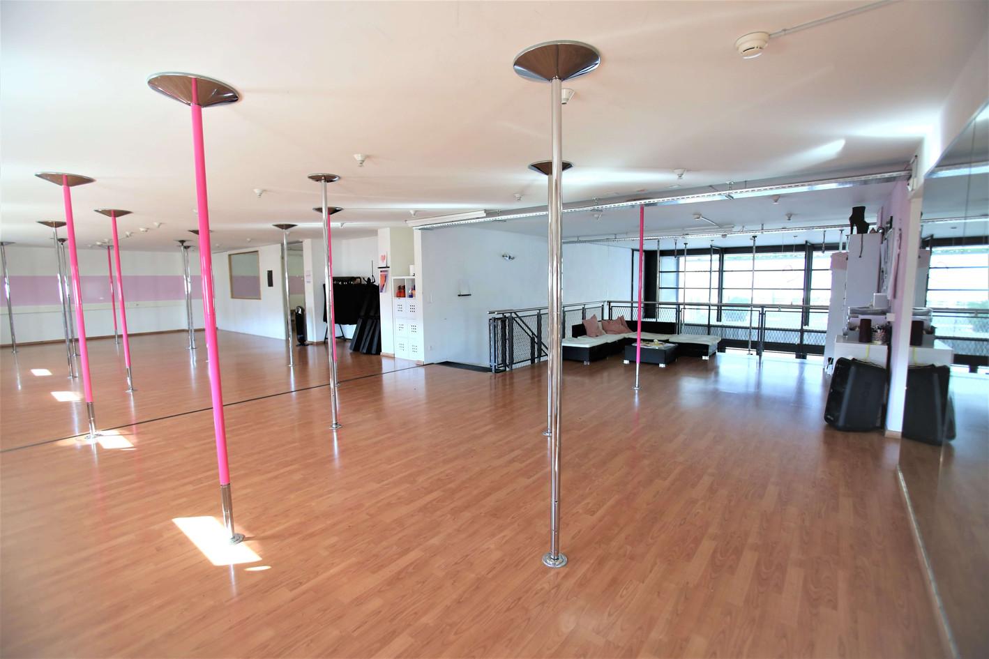 Pole Dance Fitness Bahia Dance Thun.jpeg