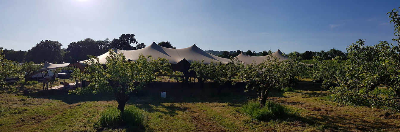 Stretch Tent in an apple field