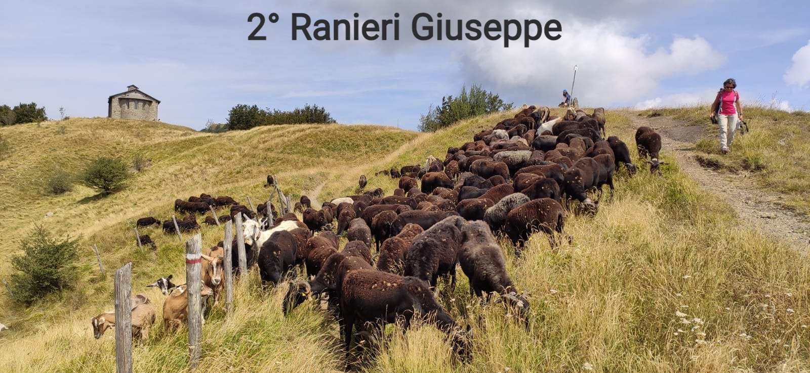2° Ranieri Giuseppe