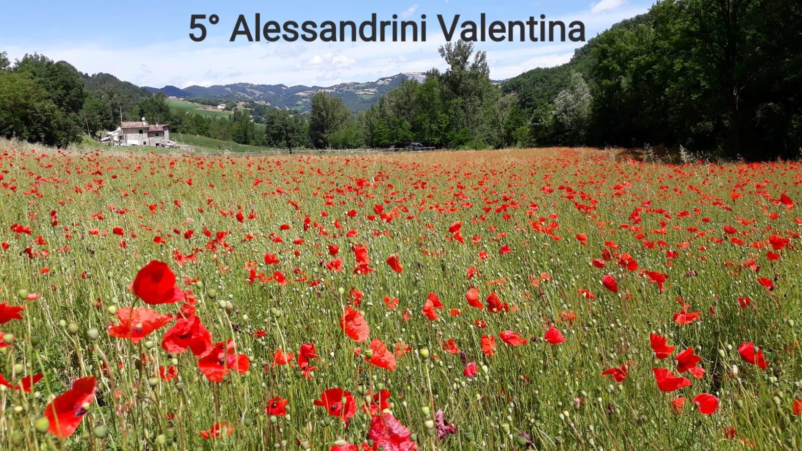 5° Alessandrini Valentina