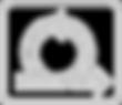 AGILITY_WEB_edited.png