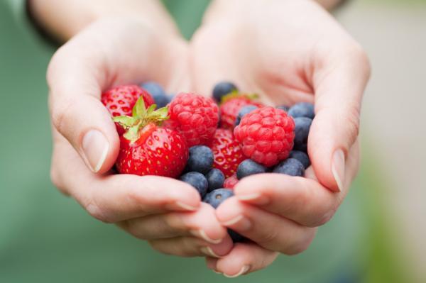 img_los_mejores_alimentos_anticancerigenos_para_sumar_a_tu_dieta_18480_600