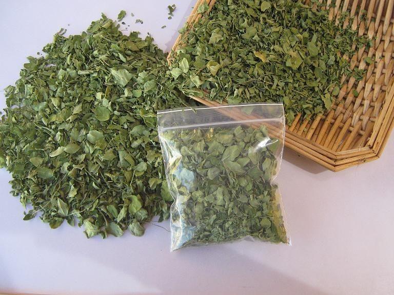 Moringa Seca $40 pesos bolsa 100 gr