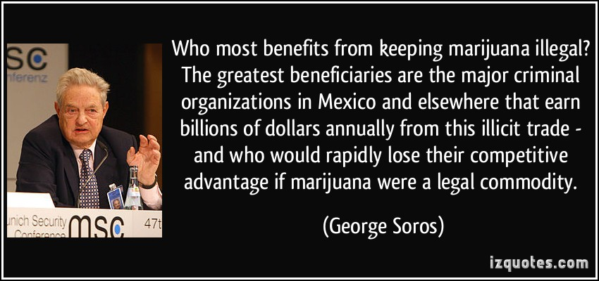 quote-who-most-benefits-from-keeping-marijuana-illegal-the-greatest-beneficiaries-are-the-major-crim