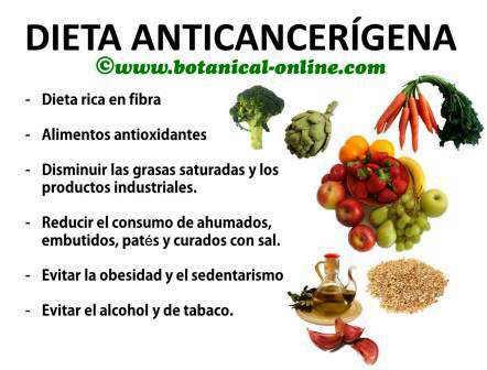dieta-anticancerigena
