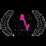 Dror Lebendiger | DOP | Cinematographer | Award Winning Cinematographer | Tel Aviv | The USA | Cinematography Awards | Best Picture Awards | Film Festivals | HAIFA Film Festival