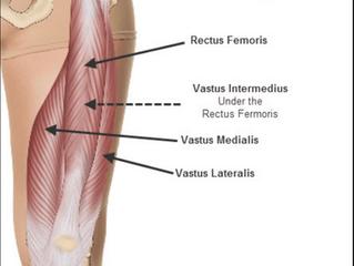 Thigh Strains (Quadriceps Injuries/ Rectus Femoris)