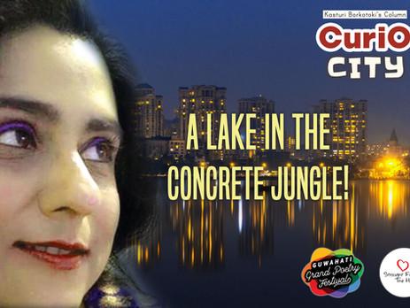 A lake in the concrete jungle!