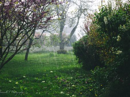 Il pleut, il pleut, bergère. Séance photo nature