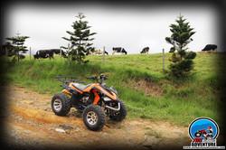 ATV Trip Desa Farm 04.jpg