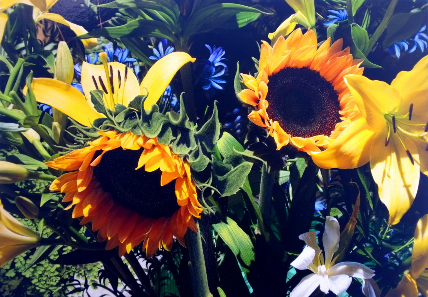 """""""Two Sunflowers"""""""