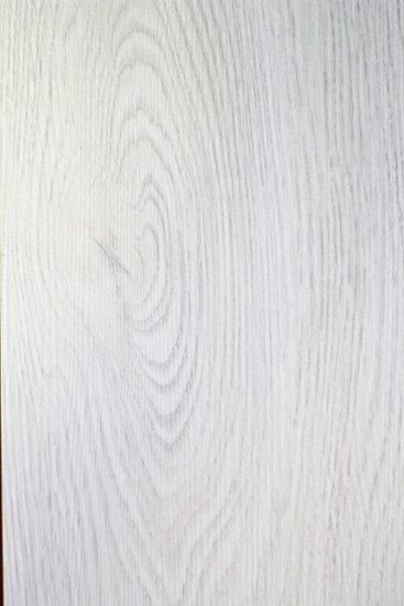 Дуб Белый (2504)