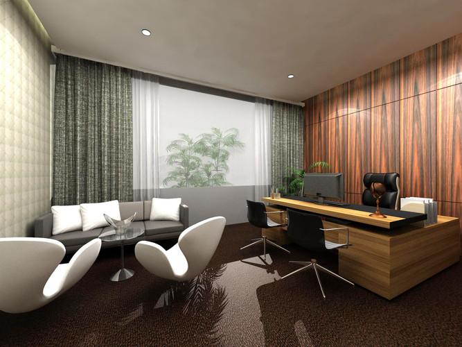 Finance director office