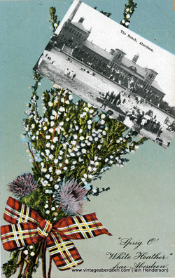 The Beach, Aberdeen - Sprig O' White Heather fae Aberdeen