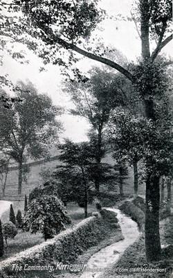 The Commonty, Kirriemuir, 1919