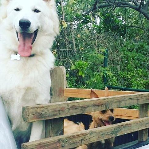 Hina & Izzy